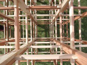 「くむんだー」木のジャングル01